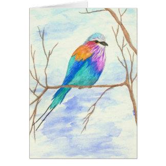 Hübscher Vogel, lila Breasted Rolle, Mitteilungskarte