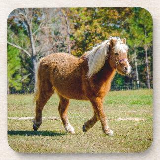 Hübsches die Shetlandinseln-Pony Untersetzer