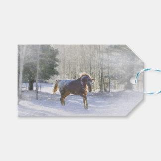 Hübsches Pferd in den Geschenkanhänger