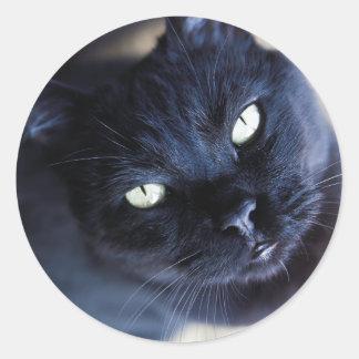 Huez huent l'autocollant de chat noir de Zoomers Sticker Rond