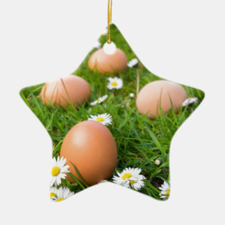 Huhn eggs im Frühjahr Gras mit Gänseblümchen Keramik Ornament