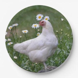 Huhn mit Podien Pappteller