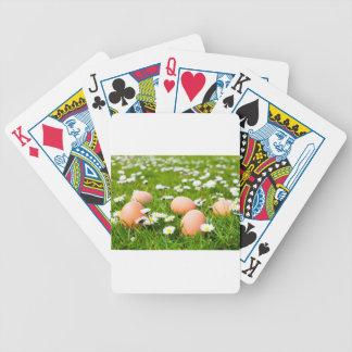 Huhneier im Gras mit Gänseblümchen Pokerkarten