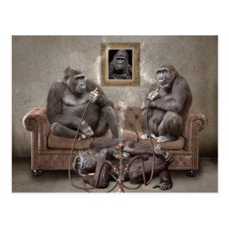 Huka-rauchende Affen-Postkarte Postkarte
