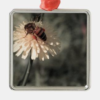 Hummel auf Blume Quadratisches Silberfarbenes Ornament