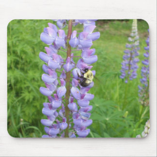 Hummel auf einer Lupine-Blume Mousepads