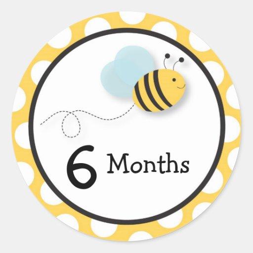 Hummel-Bienen-Monatsmeilenstein-Aufkleber