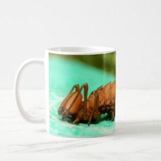 Hummer-Motten-Raupen-Wanzen-Tasse Kaffeetasse