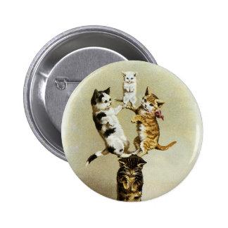 Humour mignon, jeu victorien vintage de chatons de pin's