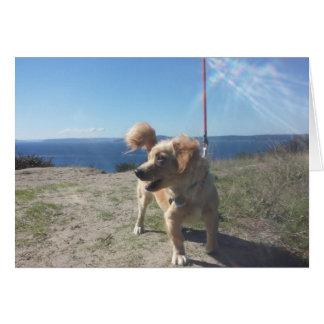 Hund auf Täuschungs-Gruß-Karte Karte
