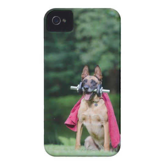 Hund Case-Mate iPhone 4 Hülle