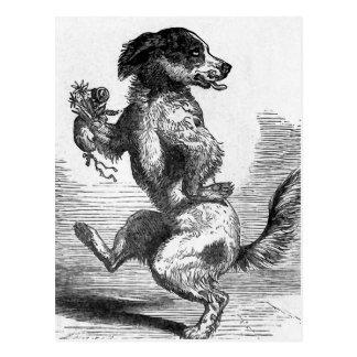"""""""Hund, der eine Spannvorrichtungs-"""" Vintage Postkarte"""