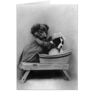 Hund, der Hund badet Mitteilungskarte
