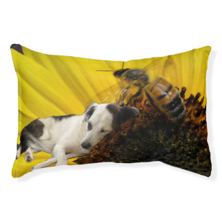 Hund, der in einem Sonnenblume-Hundebett Haustierbett