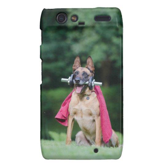 Hund Motorola Droid RAZR Hüllen