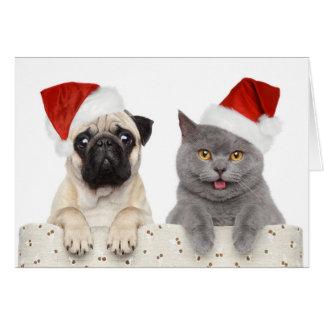 Hund und Katze im roten Weihnachtshut Karte