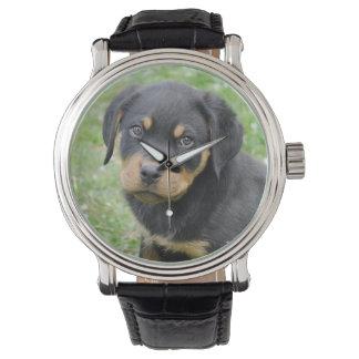 Hündchen McDogface Rottweiler Welpe Armbanduhr