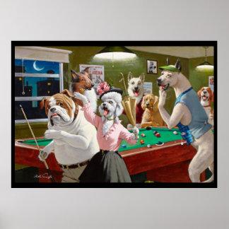 Hunde, die das Pool - verkratzt an der Dämmerung Poster