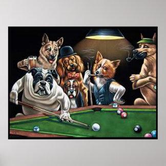 Hunde, die oben Pool - Bulldogge spielen Poster