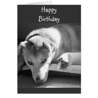 Hunde-und Meerschweinchen-Geburtstags-Karte Karte