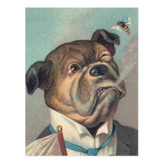 Hunde-und Wespe-Vintage Illustration Postkarte