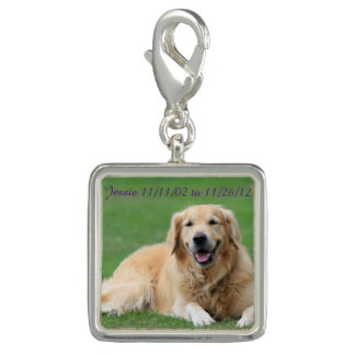 Hundecharme Foto Charms
