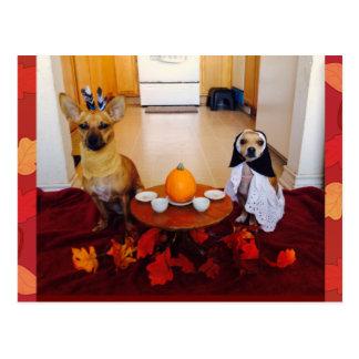 HundeErntedank Postkarte