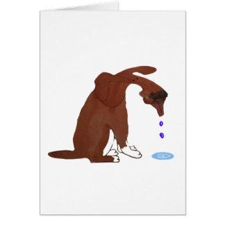 Hundegeifer-Benommenheit Karte