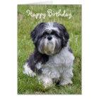 Hundeniedliche alles- Gute zum Geburtstaggrußkarte Karte