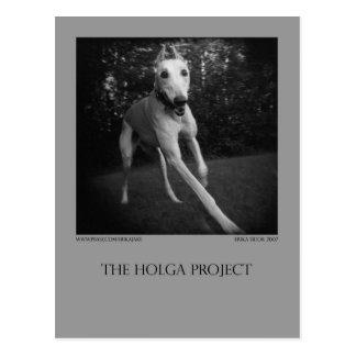 Hundepark-Postkarte 11 Postkarte