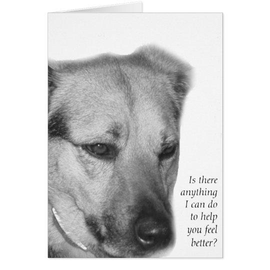 Hundesorgfalt-und -stützkarte grußkarte