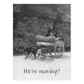 Hundewagen mit dem bärtigen Mannbewegen Postkarte