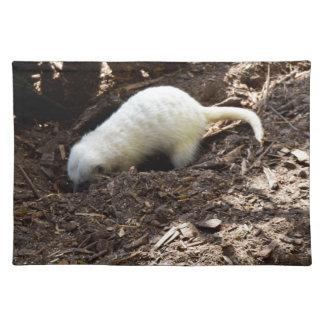 Hungriges weißes Meerkat, Stofftischset