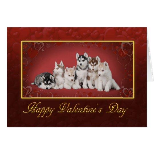 Huskys Valentinstag Karte