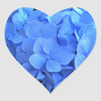 HYDRANGEA so blau u. grün - Herz-Aufkleber