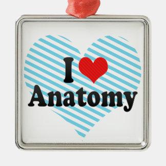 I Liebe-Anatomie Silbernes Ornament