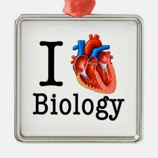 I Liebe-Biologie Silbernes Ornament
