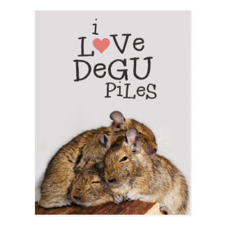I Liebe Degu Stapel Postkarte