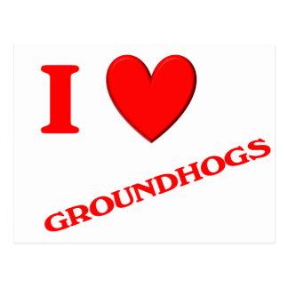 I Liebe Groundhogs Postkarte