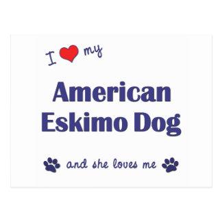 I Liebe mein amerikanischer Eskimohund (weiblicher Postkarte