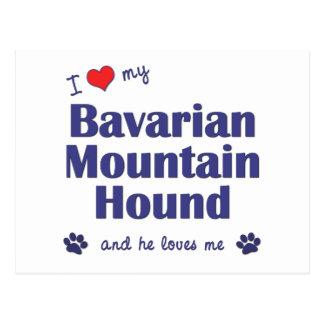 I Liebe mein bayerischer Gebirgsjagdhund männlich Postkarten