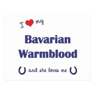 I Liebe mein bayerisches Warmblood (weibliches Postkarten