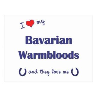 I Liebe mein bayerisches Warmbloods (mehrfache Postkarten