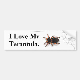 I Liebe mein Tarantula Autoaufkleber