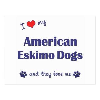 I Liebe meine amerikanischen Eskimohunde Postkarten