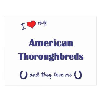 I Liebe meine amerikanischen Thoroughbreds Postkarte