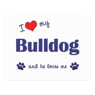 I Liebe meine Bulldogge (männlicher Hund) Postkarte