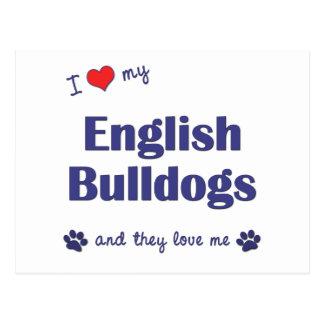 I Liebe meine englischen Bulldoggen (mehrfache Postkarte