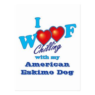 I Schuss-amerikanischer Eskimohund Postkarte