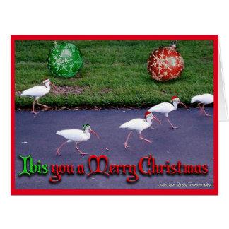 IBIS Sie frohen Weihnachten Karte